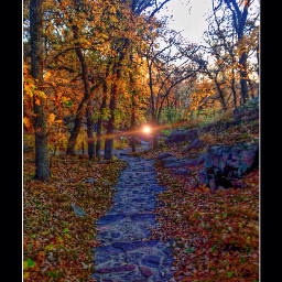 autumn fall colors pathways photography