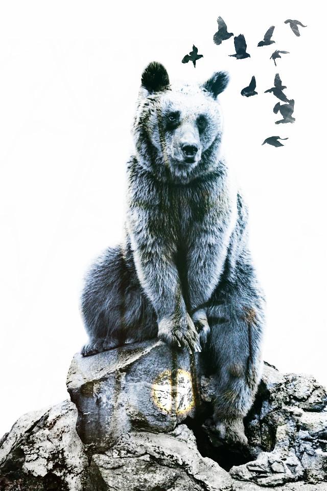 #ftebear #petsandanimals #doubleexposure #overlay #blue #moon #bear