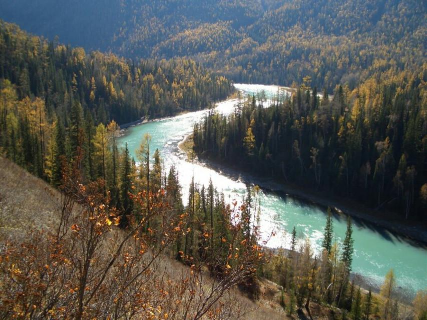#travel #photography #xinjiang #mountain #tree #river