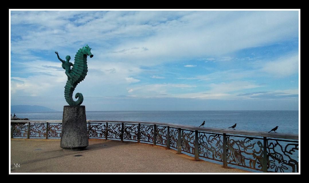 El caballito de mar, icono de Puerto Vallarta #enelmarlavidaesmassabrosa  #beach #photography #PuertoVallartademisAmores