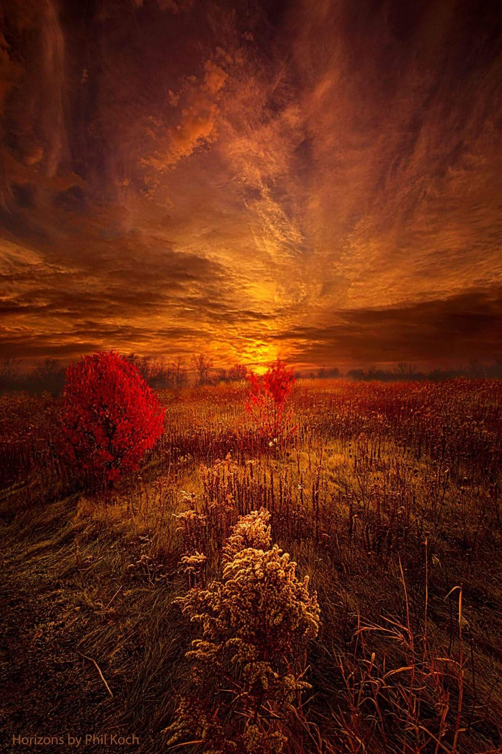 """""""Following Your Heart"""" - Horizons by Phil Koch.  #orange #autumn #fall #FallColors #warm #weather #sunrise #landscapephotography #beautiful #Nature #landscape #photography #hdr #love #peace #colorful #light #sunset #emotions"""