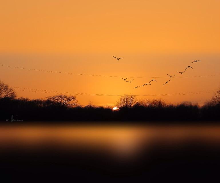 Good night my friends 💫   #sunset #panorama #squarefit #moments #peaceful