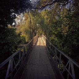kharkov bridge мост харьков lumia