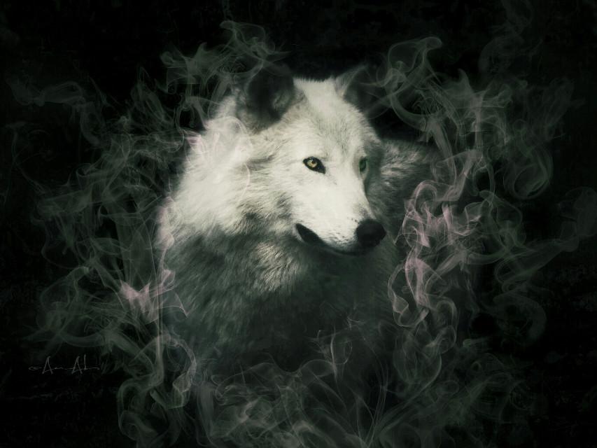 #mystery #dark #smoke #clipart #wolf