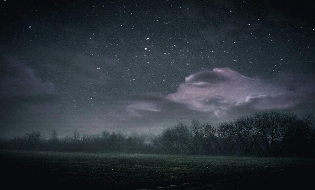 #heaven #travel #photography #freetoedit #nature #tree #fog #landscape #sky