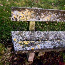 nobody bench old dramaeffect park