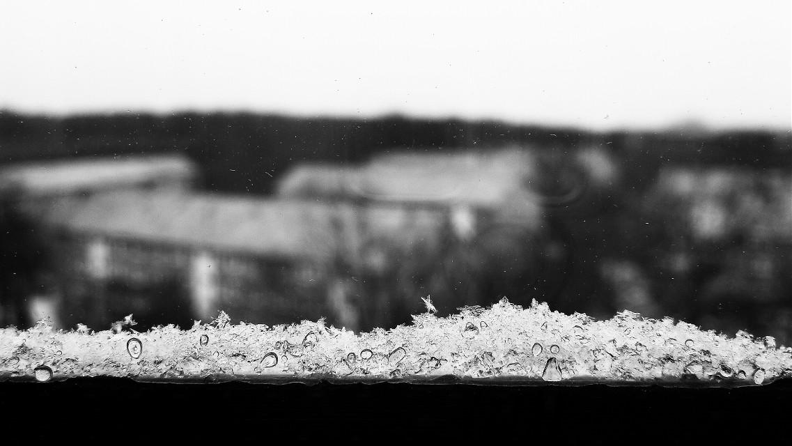 #winter  #snow  #photography #blackandwhite