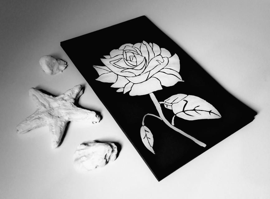 My white rose 🌹🔳 #blackandwhite  #white #whiterose  #painting #drawing #rose #shells