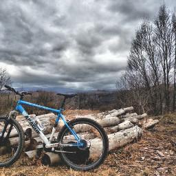 mountainbiking nature enjoyinglife love freetoedit