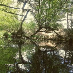 nature mirror lagoenelcielo