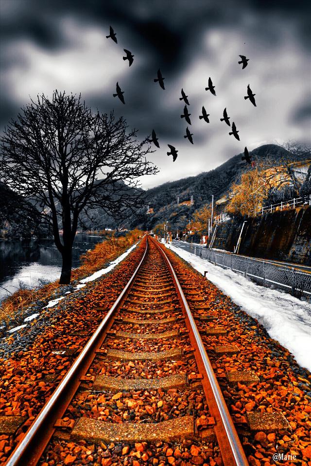 #vibrant  #railway #travel  #clipart