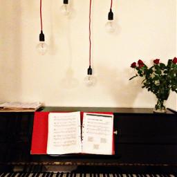 art piano lamp roses red