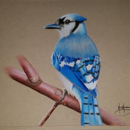 artistic creative drawing art artwork