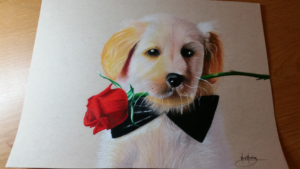 #petsandanimals #pencilart #love #flower #emotions #cute #colorful #artwork #art #drawing #artistic #creative