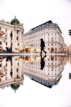 piscart reflection vienna