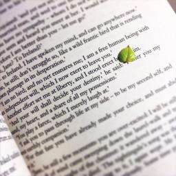 leaf hope 4months independent