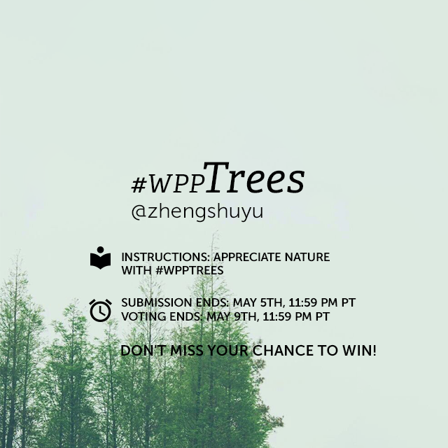 Trees, like people and animals, come in all shapes and sizes. From magnificent redwoods to plentiful orange trees, these sources of life are emblematic of growth and natural purity. For this Week's Photo Project, share your favorite shots of trees in #wppTrees! (Banner image by @zhengshuyu )