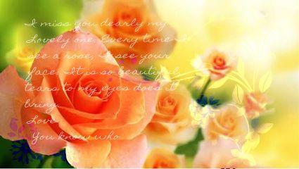 roseletter