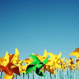 sky skyblue yellow windmill