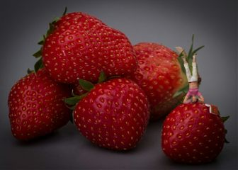 strawbeery handstand minatureworld food