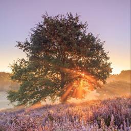 landscape nature amazing photography