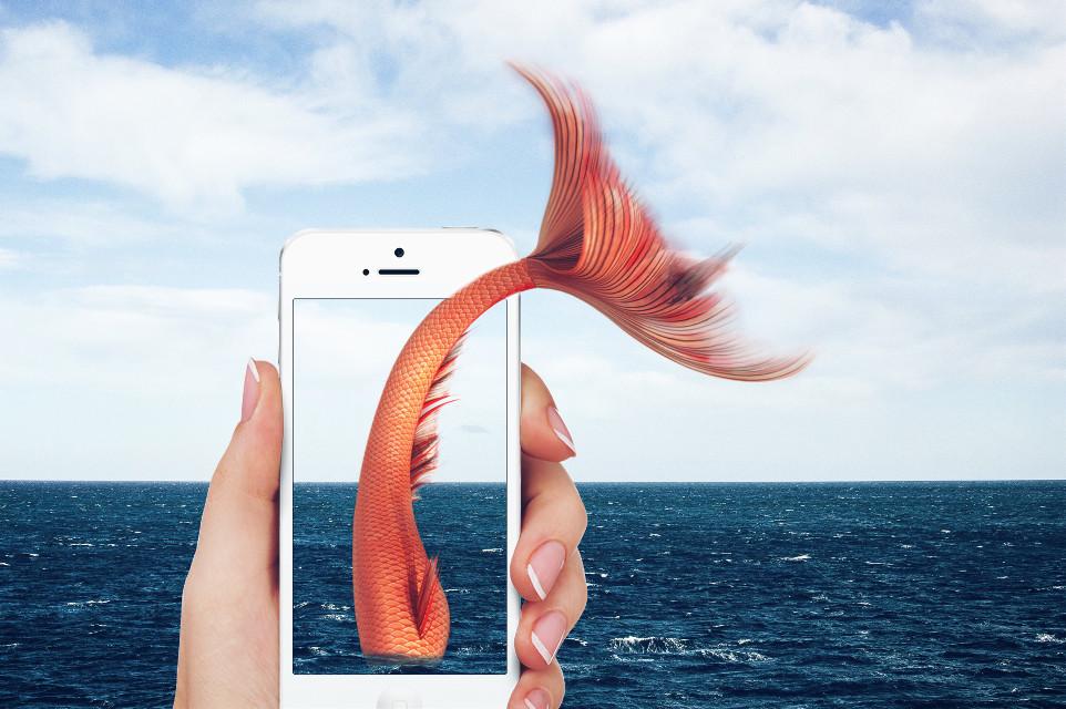 #wapoutofframe #interesting #beach #art #nature #sea #fish #mermaid #tail #sky  #ocean